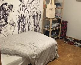 Alquilo habitacion doble amueblada en Madrid