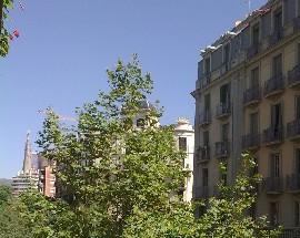 Alquilo habitacion para estudiante Eixample Barcelona