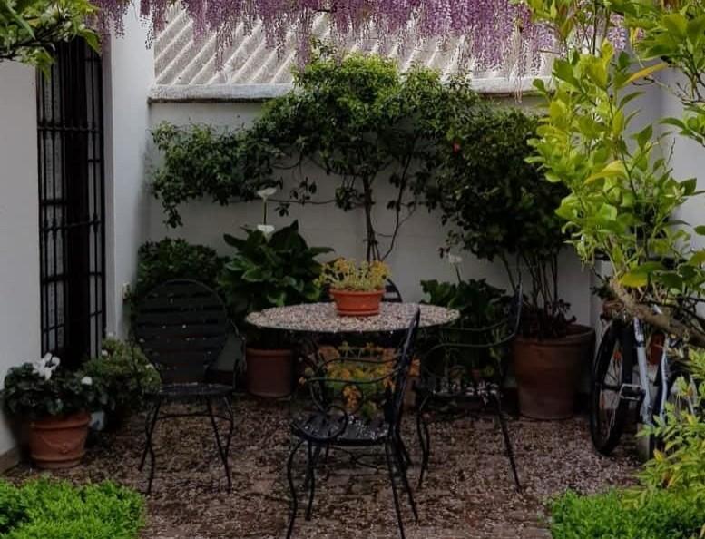 Habitacion Granada disponible desde Febrero 2020
